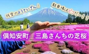 倶知安町 三島さんちの芝桜庭園
