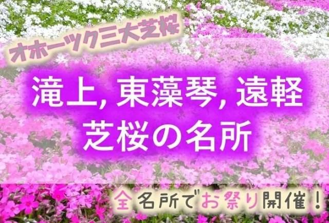 滝上町、東藻琴村、遠軽町 芝桜の名所