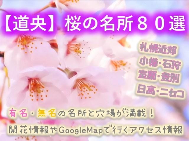 【道央の桜80選】札幌近郊から遠方!名所も穴場も情報いっぱい!