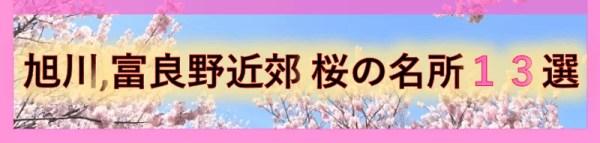 旭川、富良野近郊 桜の名所13選
