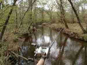 秋の湿原河川