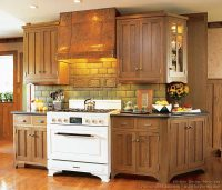Pictures of Kitchens - Traditional - Medium Wood Cabinets ...