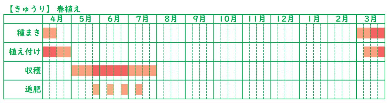 きゅうりの栽培スケジュール_春植え