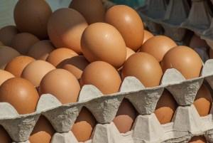 Eier Hühnereier