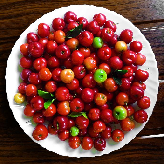 A plateful of homegrown, organic Acerola Cherries (Barbados cherries / West Indian cherries / Wild Crepe Myrtle cherries / Malpighia Emarginata)