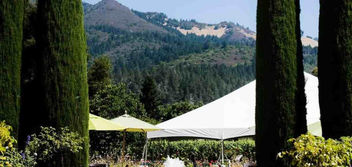 The grounds at Landmark Vineyards.