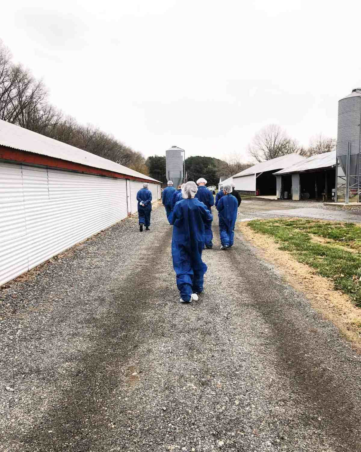 What it's like at a chicken farm in the U.S.? Learn how farmers & the National Chicken Council are working hard to provide safe, healthy, sustainable food. #sponsored