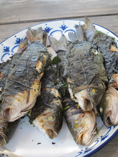 Homemade Phyllo Fig Leaf Wrapped Fish Sunset At The