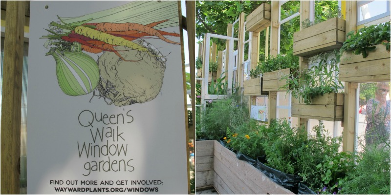 Queens Walk Window Gardens