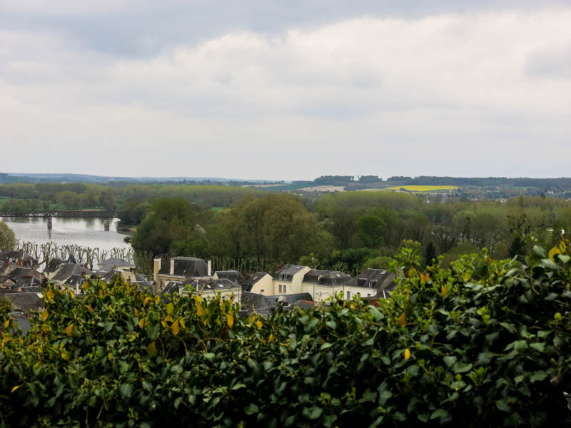 Chinon Plated Stories April 2015-219