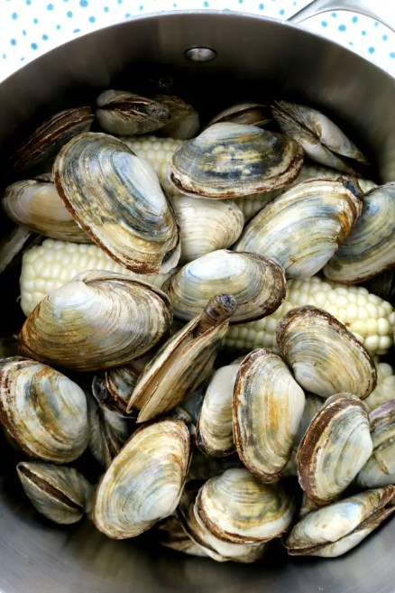 Add the Steamer Clams
