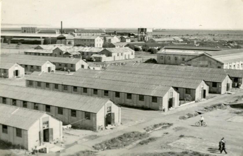 Kitchener camp, 1939, Moshe Chaim Grunbaum