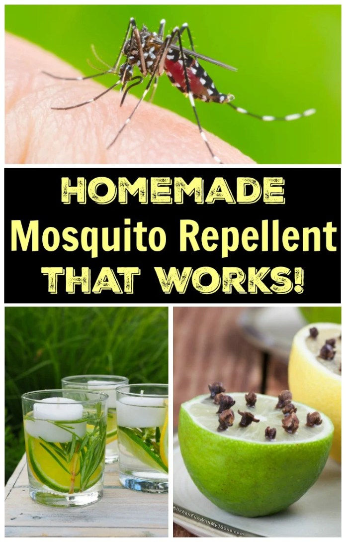 Homemade Mosquito Repellent That Works Kitchen Fun With My 3 Sons