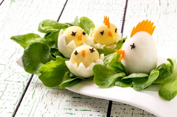 Hard Boiled Egg chicken and Chicks