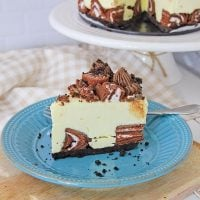Swiss Cake Roll Cheesecake (No-Bake)