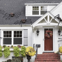 Giant DIY Spiders