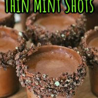 Girl Scout Thin Mint Shots