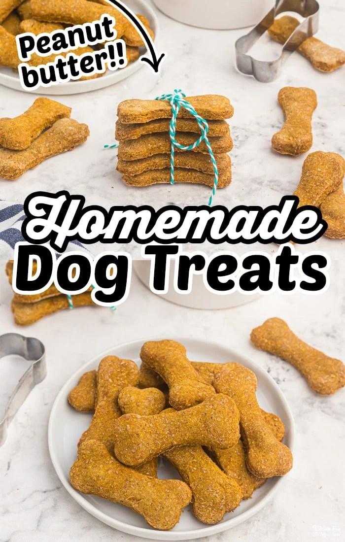 Domaće poslastice za pse koje obožavaju štenad!  Jednostavan recept s maslacem od kikirikija, bundevom i apsolutno bez konzervansa ili upitnih sastojaka.  # Psi # Recepti # DIY