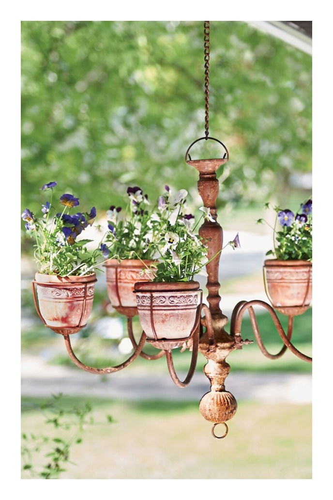 hanging planter outdoor