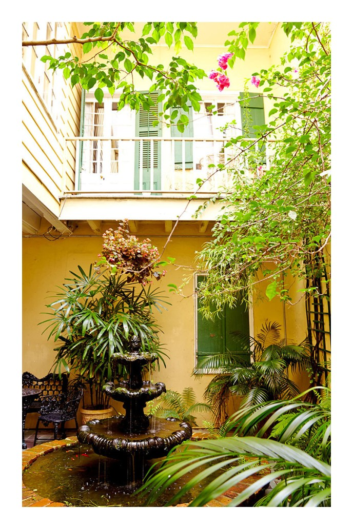 tropical garden ideas houston
