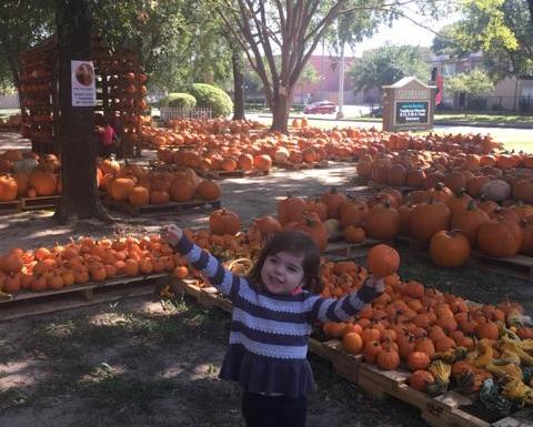 Pumpkin Patches for Children
