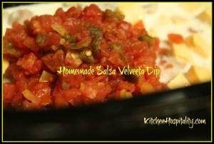 Slow Cooker Homemade Garden Salsa Velveeta Dip