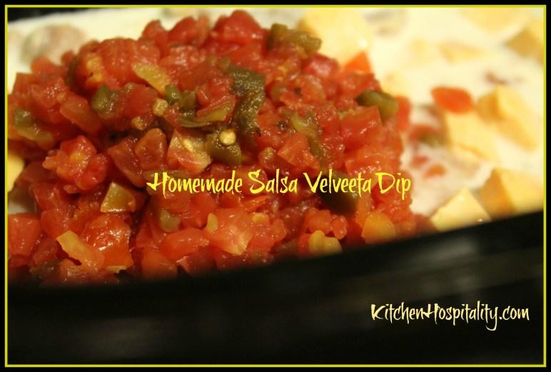 Garden Salsa Velveeta Dip