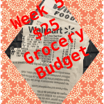 Grocery Budget $25 Per Week – Frugal Food for Two