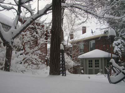 snowfeb7-1.jpg