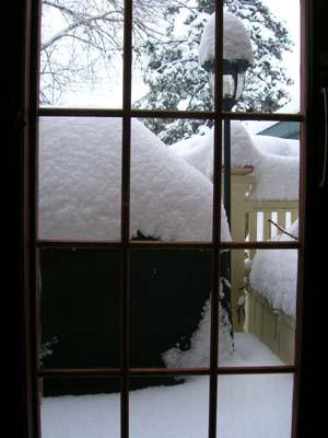snowfeb7-2.jpg