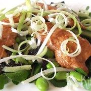 Japanse salade met teriyakikip