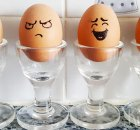 Lekkere gerechten met eieren voor de Paasbrunch of lunch
