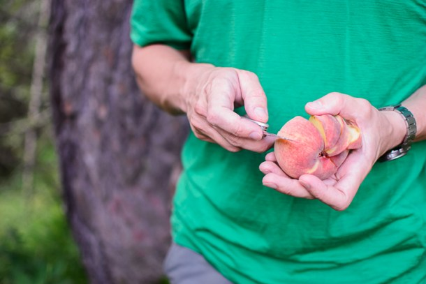 White peaches, the greatest trail food ever.