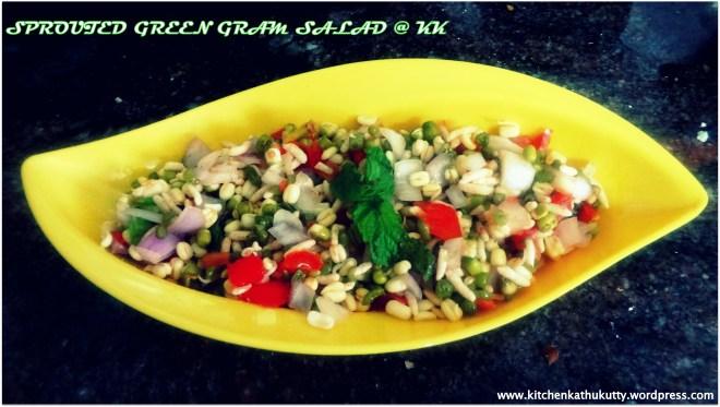greengramsproutsalad