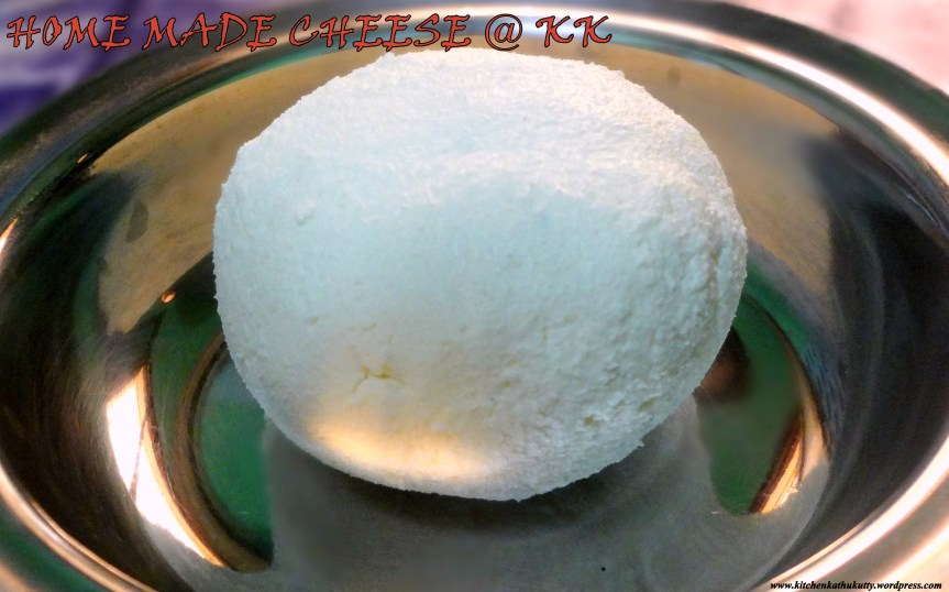 HOME MADE CHEESE-How to make cheese at home without preservatives?