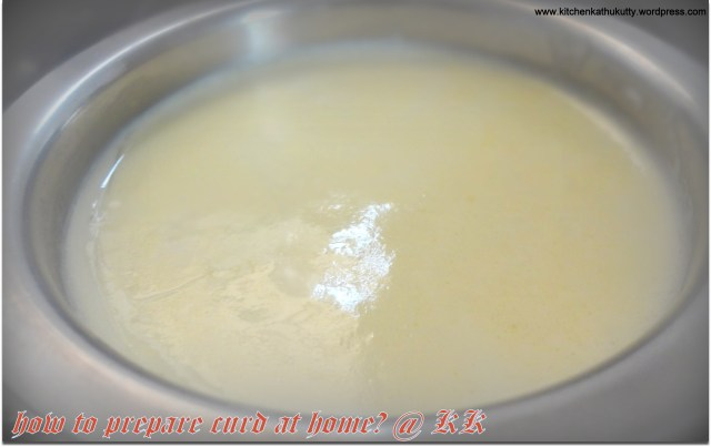how to prepare curd at home?