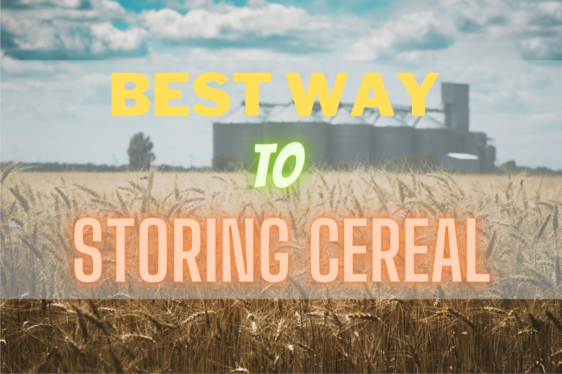 Best Way To Store Cereal
