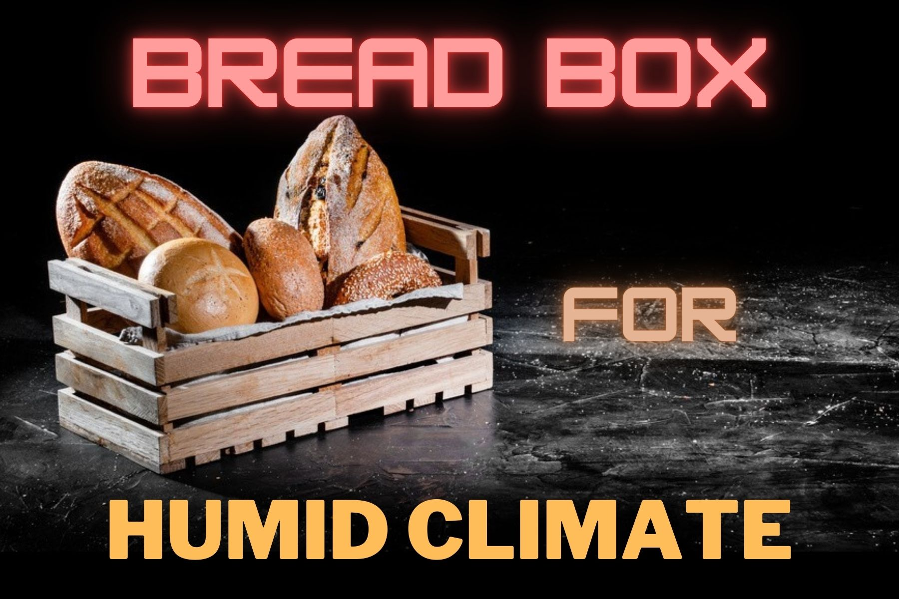 Best Bread Box For Humid Climate