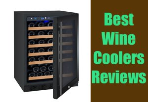 Best Wine Coolers Reviews- Top Picks of 2017 Only