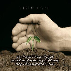 gods protective hand