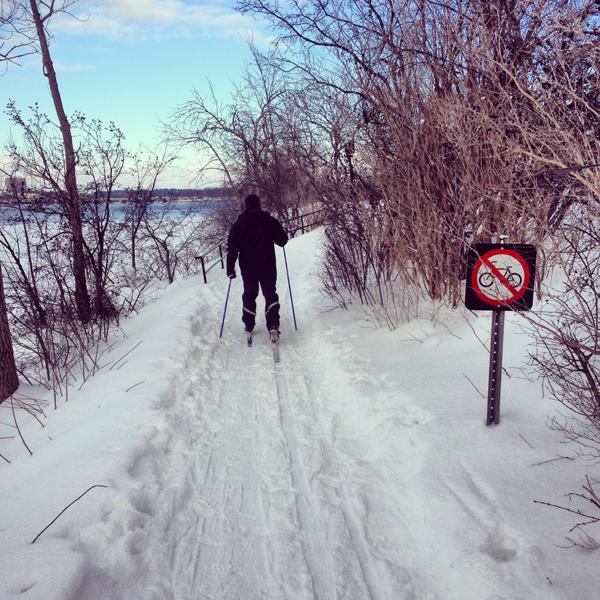 WEB14-ski1