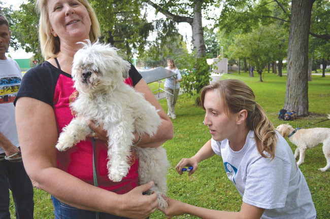 Pedicures in the Park raises money for charities that support rescue organizations and veterinarians.