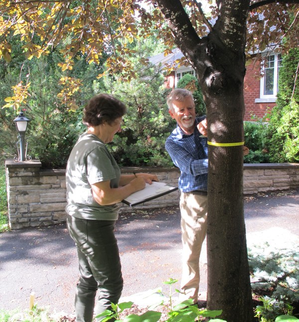Catherine Shearer and Daniel Buckles are taking an inventory of the trees in their neighbourhood. They're hoping the idea takes root in other parts of Ottawa. Photos by Andrea Prazmowski