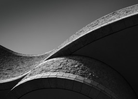 """Museum"" by Douglas Harvey"