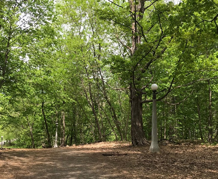 View of Hampton Park, Ottawa