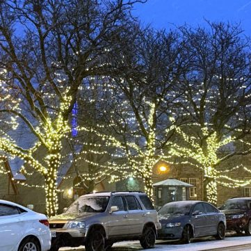 A street in Westboro has trees lit up while the snow falls.