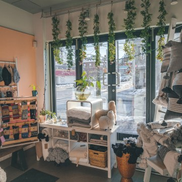Pop-up to permanent: Inside the Cloud Forest X Pokoloko store in Westboro Village. Photo by Ted Simpson.
