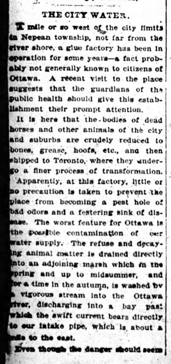 A black and white scanned photo of an article in the Ottawa Citizen in 1900 on the concerns about the local slaughterhouse.
