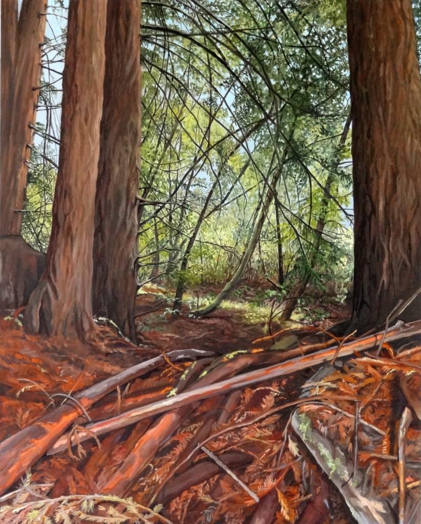 Redwood Floor 30 x25 in. 2011
