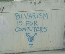 binarism is